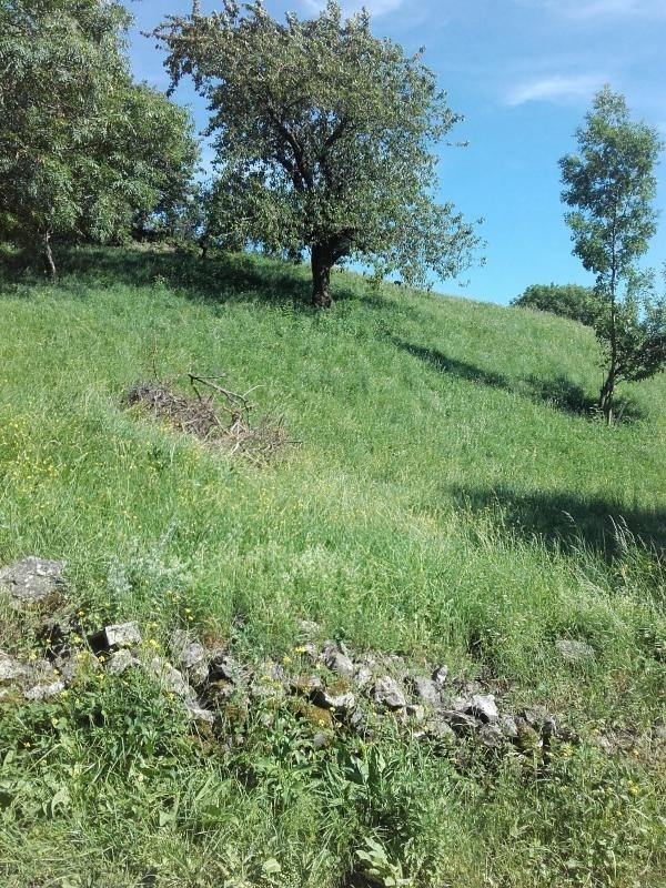 Vente terrain Aspres les corps 51000€ - Photo 2