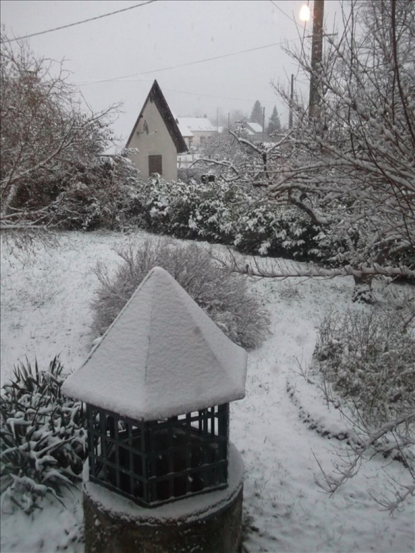 Vente maison / villa Charrin 172500€ - Photo 9