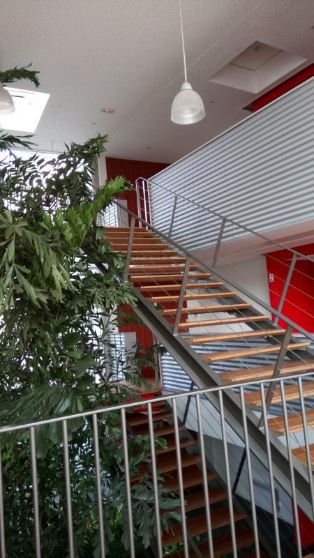 Alquiler  local Mulhouse 1100€ +CH/ HT - Fotografía 3