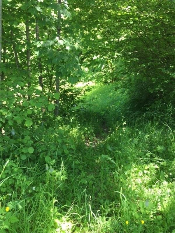 Vente terrain Mont saxonnex 459300€ - Photo 4