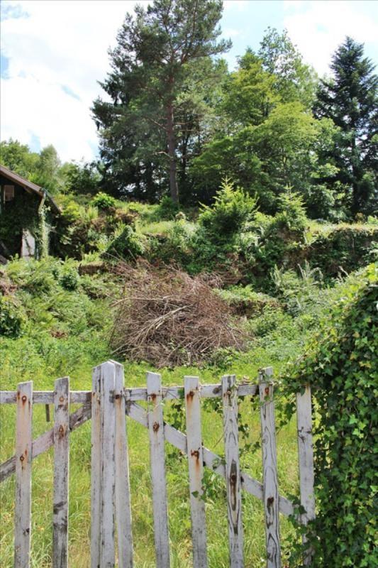 Vente maison / villa Saulxures 35000€ - Photo 3