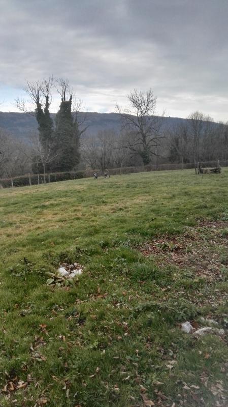 Sale site Nivollet montgriffon 116500€ - Picture 1