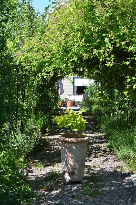 Vente maison / villa Le beny bocage 389000€ - Photo 2