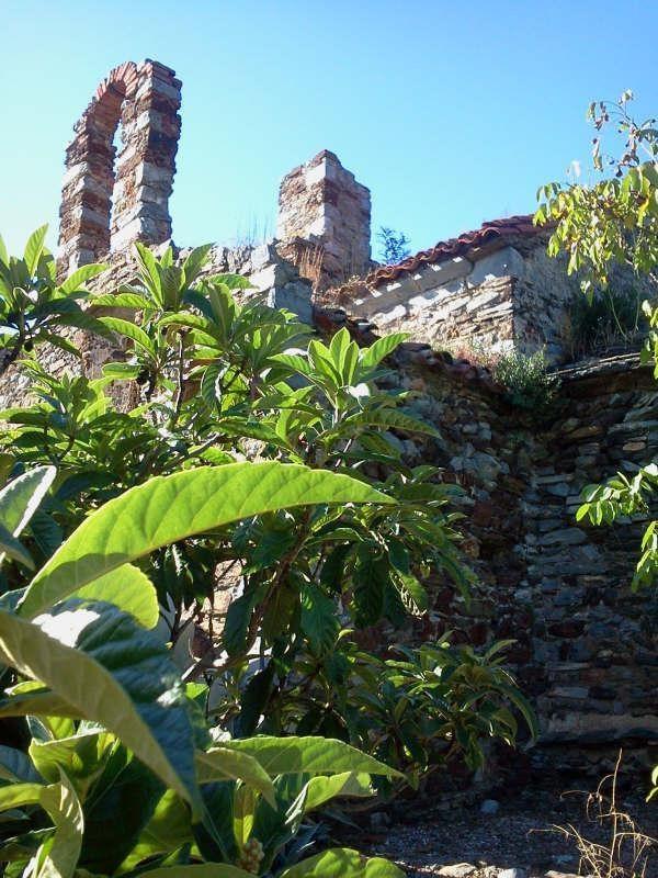 Vente de prestige maison / villa Banyuls sur mer 780000€ - Photo 5