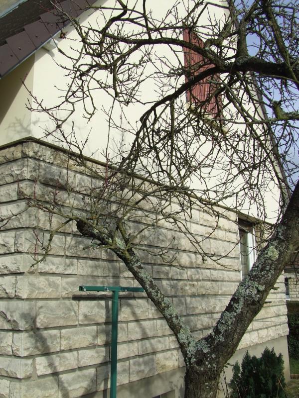 Vente maison / villa Saint etienne du rouvray 170000€ - Photo 26