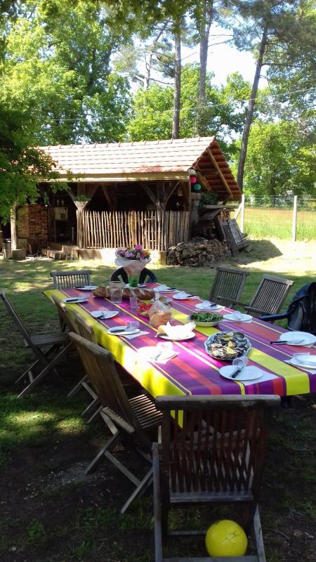 Vacation rental house / villa Mimizan 830€ - Picture 4