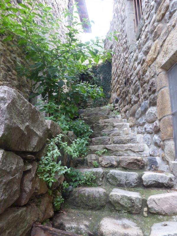 Vente maison / villa Vals-les-bains 125000€ - Photo 17
