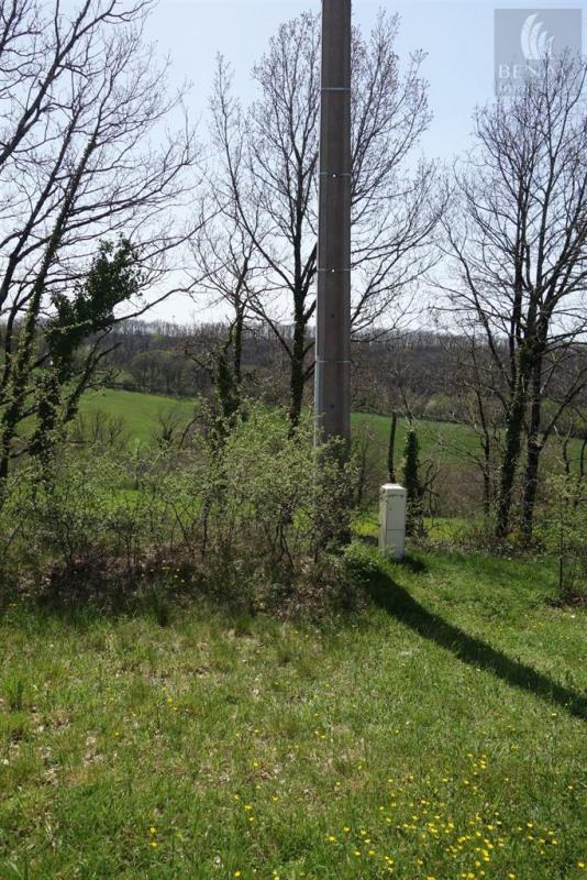 Vente terrain St antonin de lacalm 28000€ - Photo 3