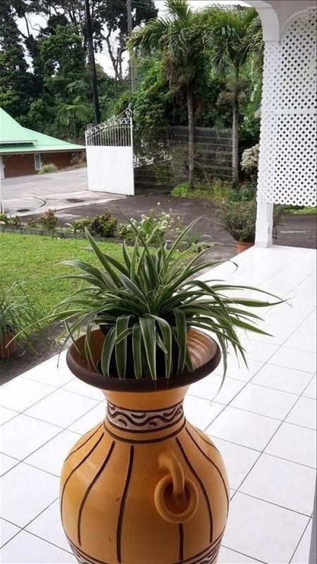 Sale house / villa St claude 337 600€ - Picture 2