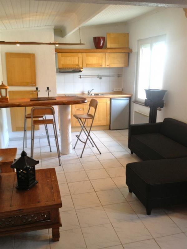 Location appartement Quint fonsegrives 398€ CC - Photo 1
