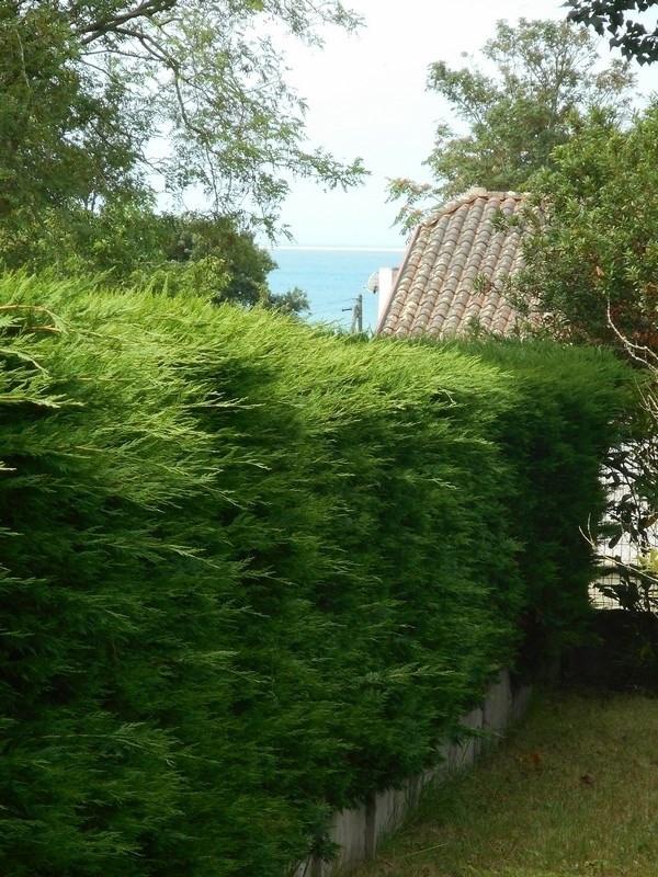 Location vacances maison / villa Saint-palais-sur-mer 380€ - Photo 4