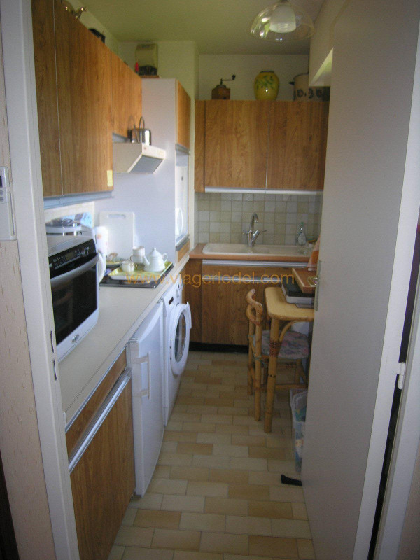 Viager appartement Golfe-juan 53 000€ - Photo 2
