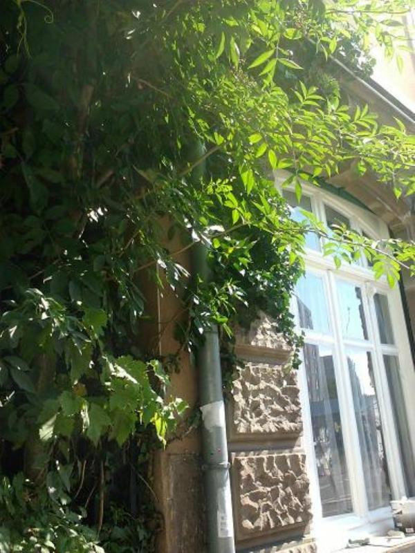 Alquiler  apartamento Mulhouse 370€ CC - Fotografía 1