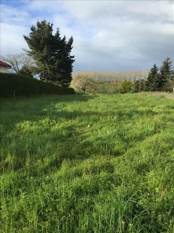 Vente terrain Le fief sauvin 35200€ - Photo 1