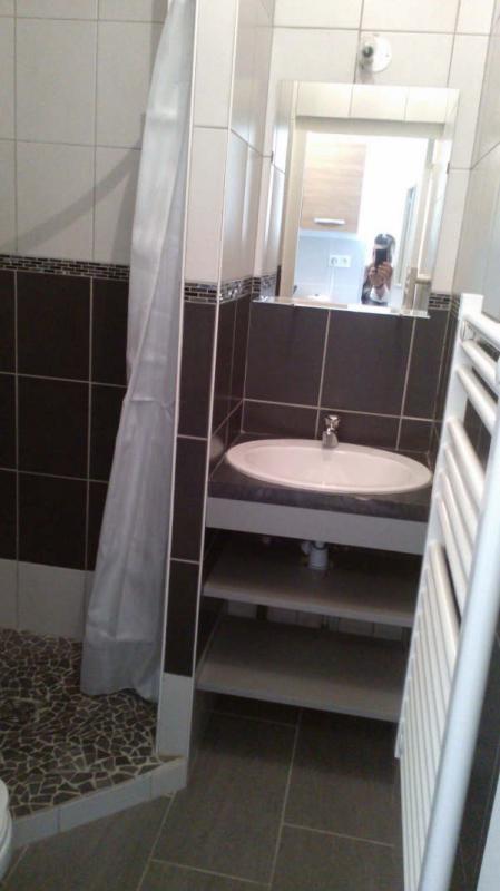 Rental apartment Pierre benite 510€ CC - Picture 3