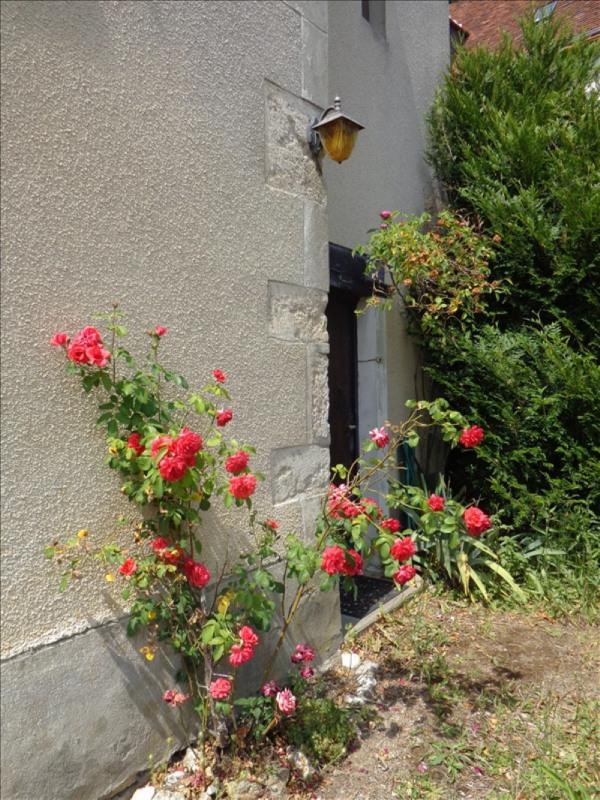 Sale house / villa Les montils 99000€ - Picture 1