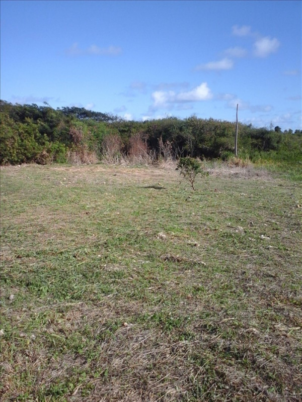 Sale site Anse bertrand 120 000€ - Picture 1