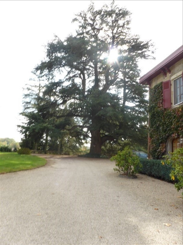 Revenda residencial de prestígio casa Villars les dombes 2500000€ - Fotografia 5