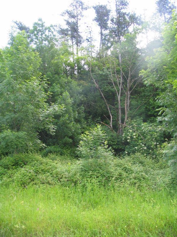 Vente terrain Brantome 28500€ - Photo 3