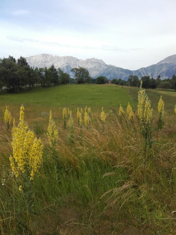 Vente terrain La motte en champsaur 69500€ - Photo 2