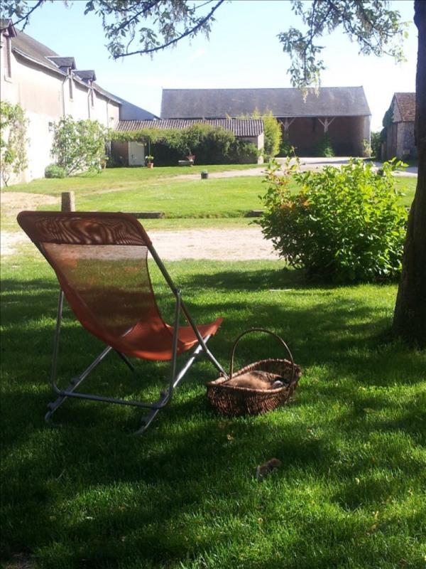 Deluxe sale house / villa Blois 336000€ - Picture 7