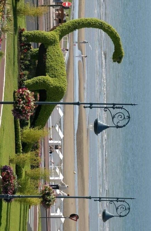Sale parking spaces Villers sur mer 6500€ - Picture 1