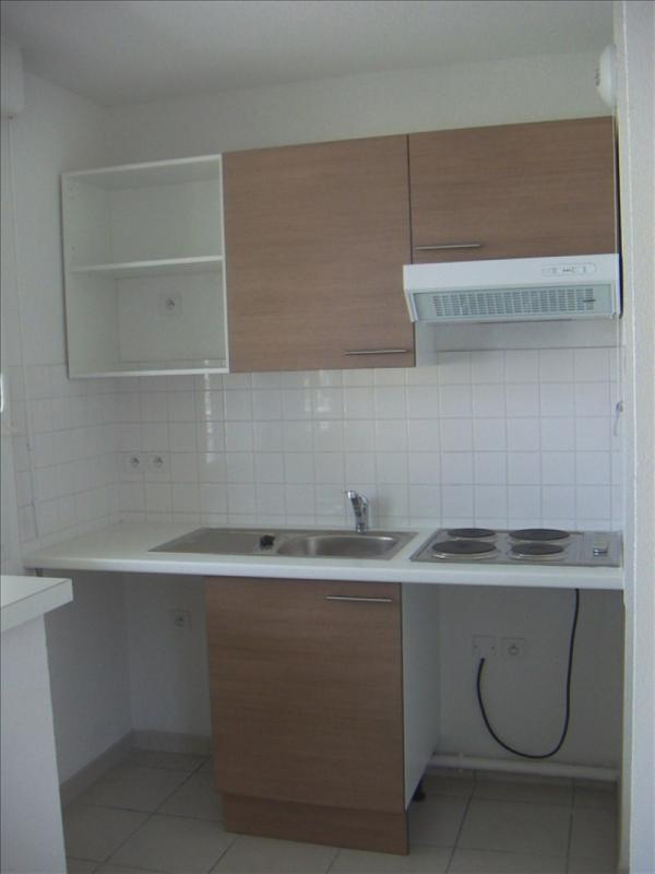 Location appartement Castelnau d estretefonds 413€ CC - Photo 1