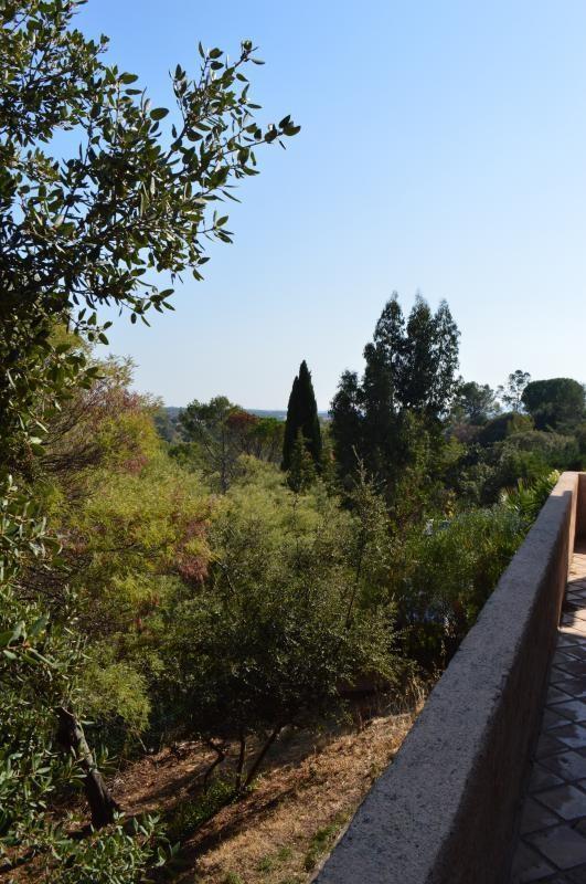Verkauf haus Roquebrune sur argens 410000€ - Fotografie 2