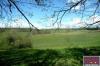 2 ha, ferme rénovée, manege et box à chevaux Rabastens