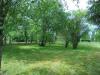 Maison Bonny Sur Loire 4 pièces 82 m² terrain arboré 3200 m²