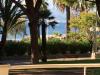 Cannes Croisette Palm Beach Cannes