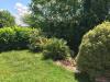 Appartement T3 – fonctionnel – lumineux - jardin privatif Castanet Tolosan Secteur