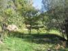 Vente terrain Draguignan (83300)