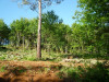 Stukken grond  Puy l Eveque