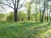 Terrain constructible, 4616 m² - Puy l Eveque (46700)