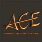 ACE IMMOBILIER DENTREPRISE
