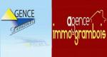 Agence demontis - immo grambois