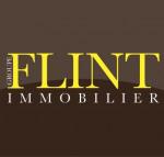 Flint immobilier