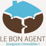 Goossens Thierry Le bon agent