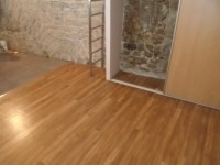 Location appartement Caluire 433€ CC - Photo 2