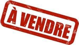 Sale site Saint-yrieix-sur-charente 55000€ - Picture 1