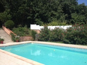 Rental house / villa La salvetat saint gilles 1 840€ CC - Picture 3