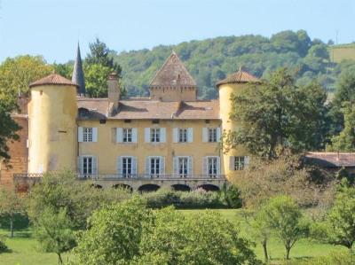 chateau a vendre 71390