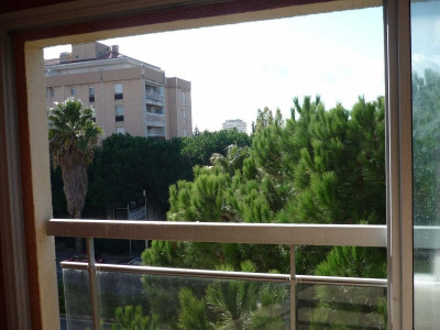 Location appartement Frejus (83600)