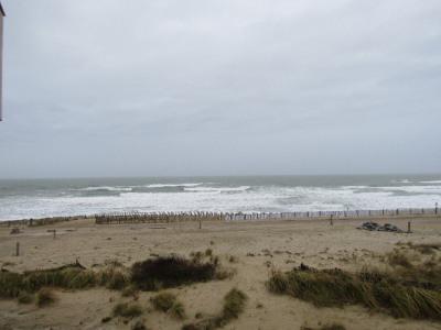 Magnifique vue océan