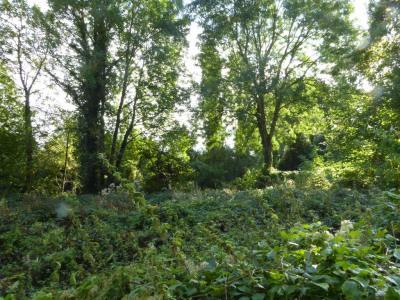 Vente terrain Magny en Vexin