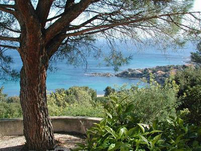 Vacation rental house / villa Les issambres 1910€ - Picture 5