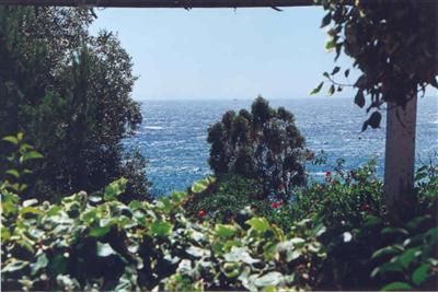 Vacation rental house / villa Cavaliere le lavandou 800€ - Picture 1