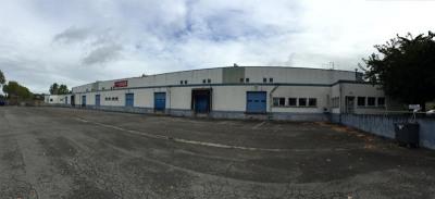 Location Local d'activités / Entrepôt Grisolles