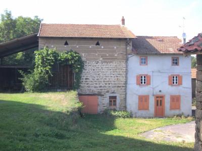 农场 6 间房间